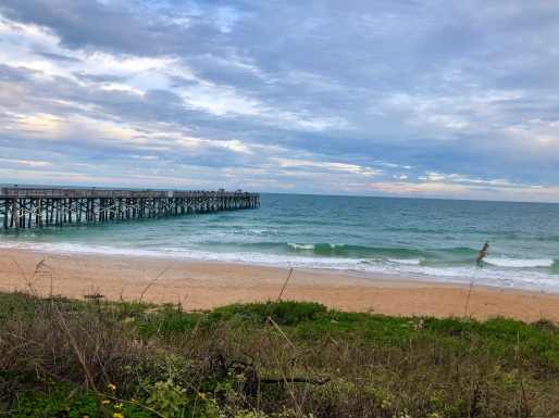 Beach and pier in Flagler