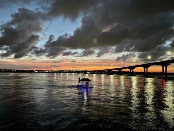 Cruisin' Tiki by the Vilano bridge